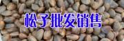 贵州威宁松子价格&贵州核桃仁哪有卖#毕节核桃米
