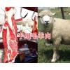 半细毛羊肉销售&黑山羊肉供应-凉山昭觉肉牛肉羊基地