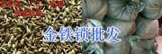独定子种一斤多少钱/金铁锁种子今日供应15912537958