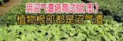 沼气渣有机肥生产厂家技术(个旧市益农农业发展有限公司)