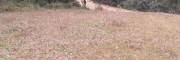 云南宜良有证林地转让-种养殖地,昆明土地不动产登记证服务