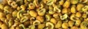 金刺梨产地直销-贵州金刺梨种植地/供应云南金刺梨