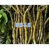 丽江石斛专卖—13628889021-野生铁皮石斛条-枫斗