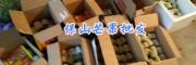 5月生芒果:保山酸脆生芒果_云南省芒果品种