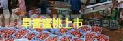 早红桃—红河州阳光果园-早香蜜桃