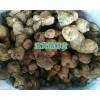 滇黄精根状茎种植方法-滇黄精鲜货10吨种苗_红河州建水黄精