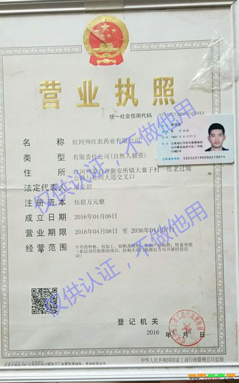 红农药业营业执照