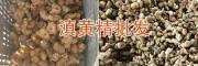 云南黄精出售:红花滇黄精块茎鲜货—13987819680