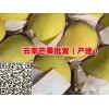 昆明芒果供应批发:金煌芒果、台农1号、鹰嘴芒果、圣德龙