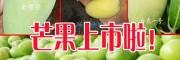 哪里的芒果的批发价格便宜_青芒果市场批发是多少?