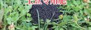洋芋肥料厂家-云南土豆复混肥料销售400-8836-888