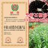 黑籽石榴苗树苗价格多少钱一棵?种植几年后结果?种植技术有哪些?