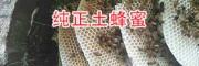 丽江纯天然蜂蜜-新蜂蜜开割15012240531