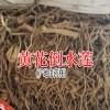 黄花倒水莲价格是多少钱一斤?