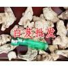 哪里有白芨|白芨产地|贵州白芨供应商|邵阳县众兴中药材种植专业合作社