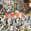 黄精种植适宜的条件_黄精播种是在什么时间?