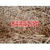 金铁锁种子生产厂家[保底回收]_中药金铁锁权威合作企业