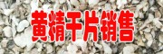 红花黄精种苗图片大全_鲜红花黄精种子多少钱一斤-红花黄精种子