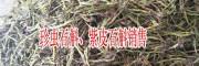 紫皮石斛多少钱一斤?紫皮石斛有什么功效与作用