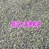 天冬苗丽江种植基地的播种方法