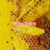 云南土蜂蜜特点_云南土蜂蜜保山有销售 13577043142