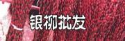 四川银芽柳基地-18181979853