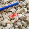 黄姜粉_小黄姜粉_黄姜粉价格_购姜热线:18288499158