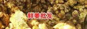 现在黄姜多少钱一斤?_野生黄姜姜黄图片