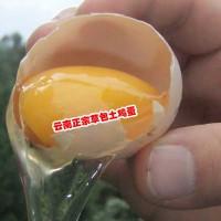 卖土鸡蛋+吃土鸡蛋_农家土鸡蛋_15911346412