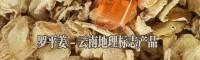 罗平县旭禾姜业购销专业合作社产品图片信息