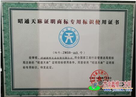 昭通天麻商标专用证书