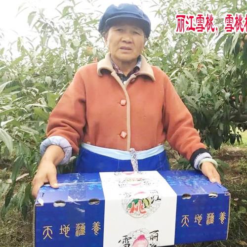 2018-2019丽江雪桃礼盒装图片
