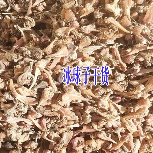 亳州市场山慈菇行情_山慈菇多少钱?