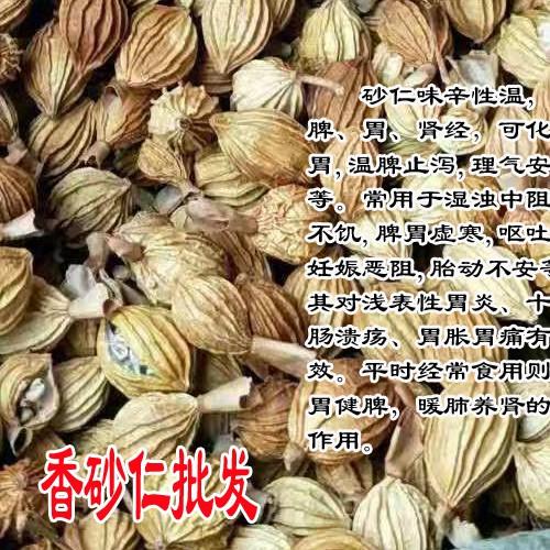 阳春砂产地报价240元左右(附图)