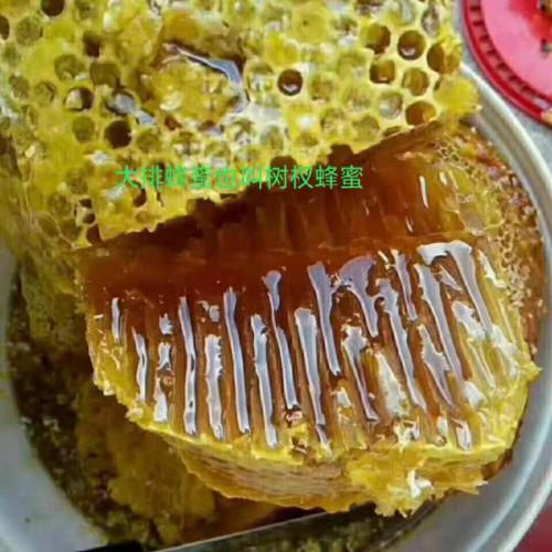 大排蜂蜜_景洪勐罕帕当下寨生态蜂蜜_树权蜂蜜_景洪勐罕帕当下寨生态蜂蜜养殖基地