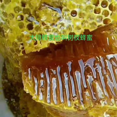 云南野生大排蜂蜜_树杈蜂蜜_景洪大排蜂蜜_蜂蜜_大排蜜