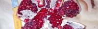 软籽石榴#种植修剪技术两个步骤_树苗价格