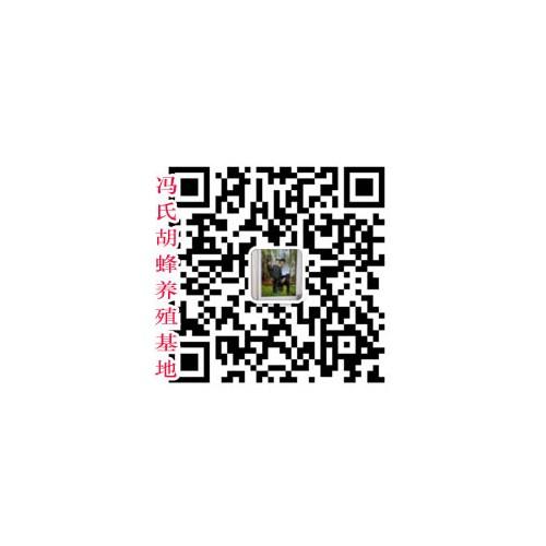 2019年4月28日云南,广西胡蜂多少一斤,价格行情动态