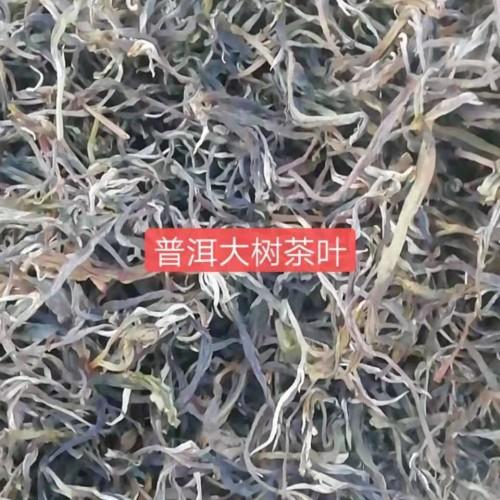 生态普洱茶普洱古树&茶古树茶怎么泡&普洱台地茶云南普洱茶网古树茶%