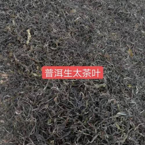普洱茶150吨&古树普洱&古树红&野生红20吨、滇红茶300吨供应商