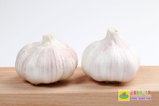 现在大蒜多少钱一斤