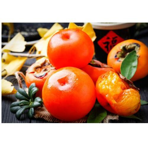 甜柿子树苗_雷正荣柿子苗好品种推荐信息_哪些功效及作用?