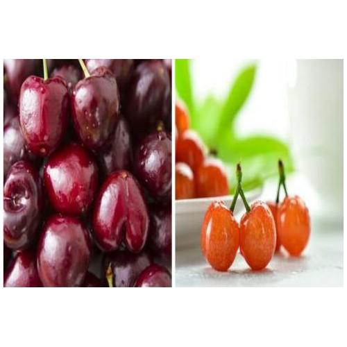 车厘子多少钱一斤?和大樱桃有什么不同?