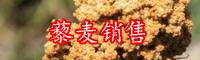藜麦种植前景与行情价格-