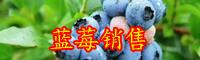 野生蓝莓种植需要些什么条件-营养价值