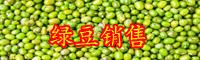 绿豆是寒性的蔬菜吗?可以家庭种植吗?