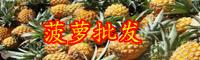 2020年云南菠萝的价格是多少钱一斤?种植方法要点有哪些?