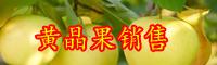 """云南热带水果""""黄晶果""""种苗多少钱一棵?种植一亩的成本及利润是多少?"""