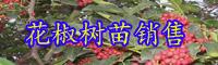 云南今年花椒苗多少钱一棵?适合哪些地区种植?