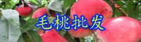 云南落叶乔木毛桃是凉性水果吗?